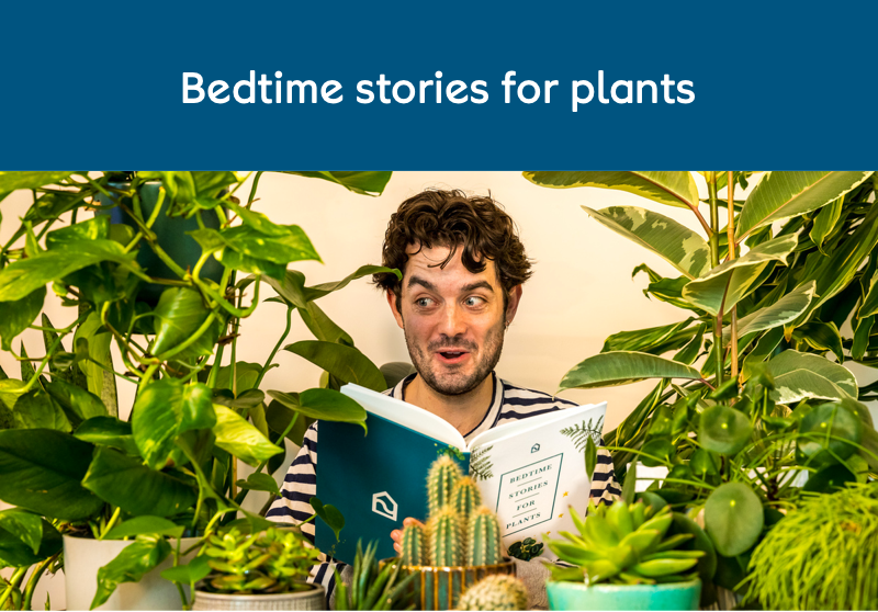 Bedtime stories for plants press release